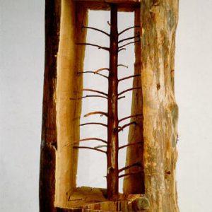 https://www.reforestaction.com/blog/giuseppe-penone-memoire-darbres
